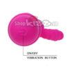 Dương vật giả mini silicone Prettylove Arnd DV39A giá rẻ tại tphcm mua ở đâu uy tín chất lượng