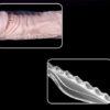 Bao đôn to dài dương vật trong suốt BD89 siêu gai và đàn hồi tốt