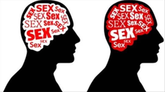 tình dục là gì