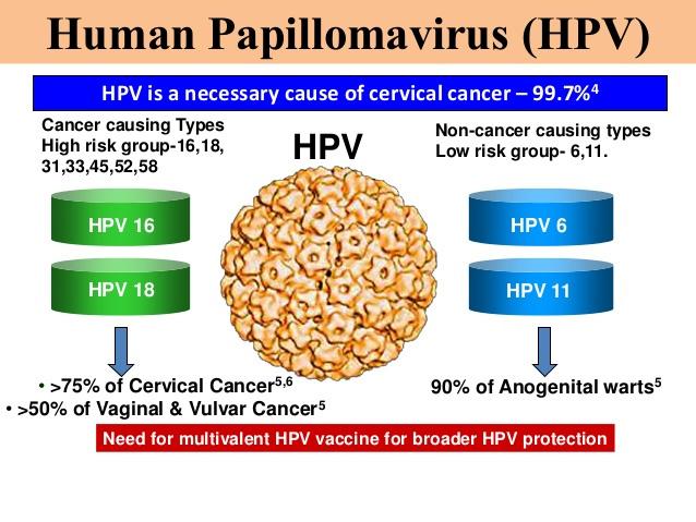HPV là gì và tác hại như thế nào với sức khỏe phụ nữ
