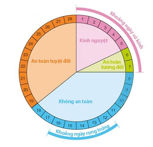 bản đồ chu kỳ kinh nguyệt của phụ nữ để biết tránh thai