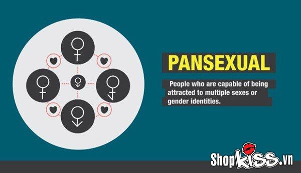 Xu hướng tình dục pansexual là gì