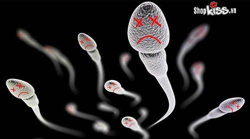 Tinh trùng sống được bao lâu trong không khí bên ngoài